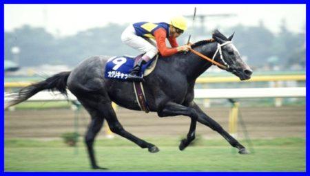 オグリキャップ,競走馬,名馬