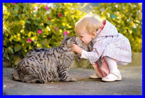 猫,子供,キス