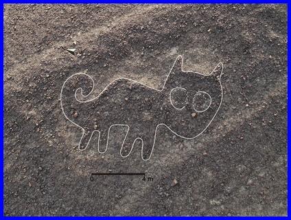 猫,地上絵
